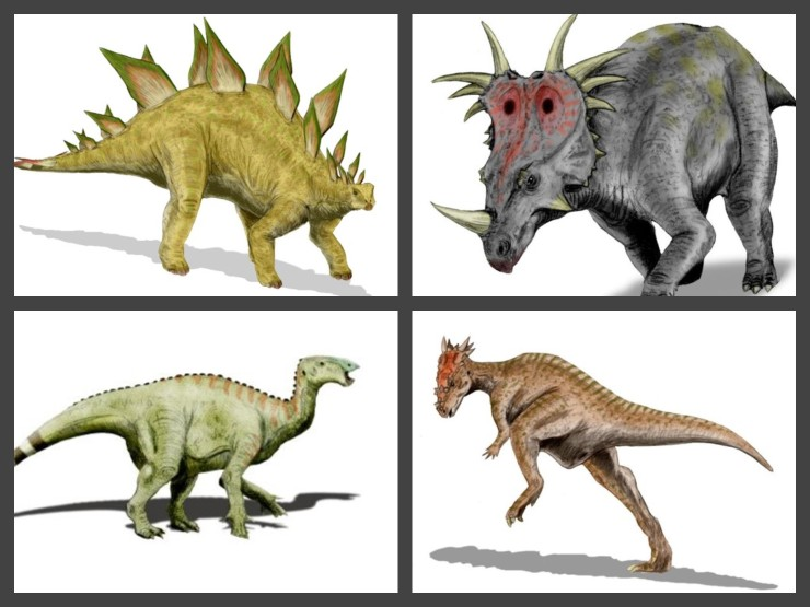 Beipiaosaurus Is A Medium Sized Herbivorous Dinosaur That One Of The Oldest Members Famous Therizinosaur Group Long Necked And Clawed